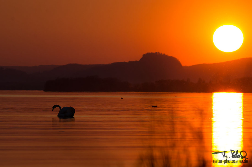 Sonnenuntergang am Gnadensee