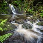 Schwarwald Wasserfall