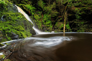 Schwarzwald Wasserfall