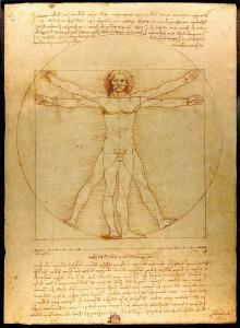 Leonardo da Vinci - der virtruvianische Mensch