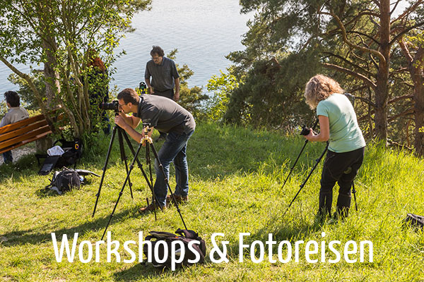 fotografie workshops fotoreisen